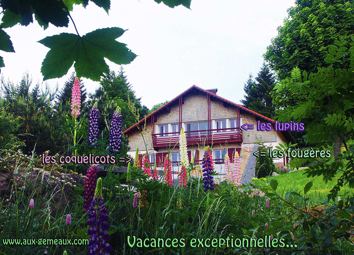 location chalet gerardmer